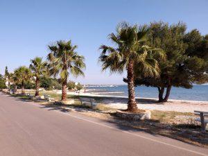 Strand in Vir